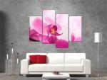 Multicanvas orhidee roz 4 piese - cod E21