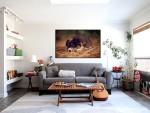 Tablou canvas catel dragut - cod A20