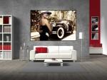 Tablou canvas retro style - cod F15
