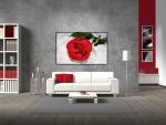 Tablou canvas trandafir rosu - cod L06