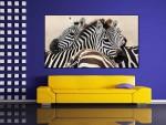 Tablou canvas zebre - cod P04