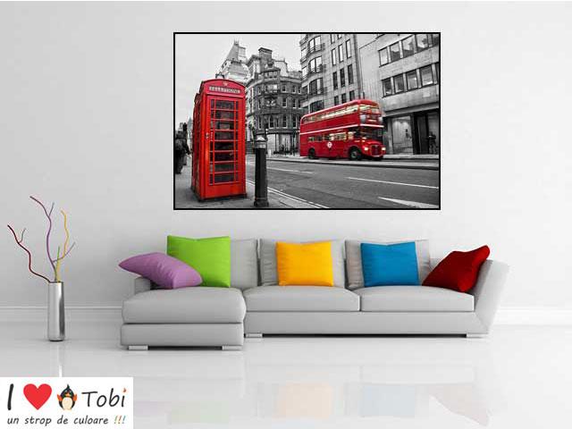 Tablou decorativ Londra bicolor - cod T05