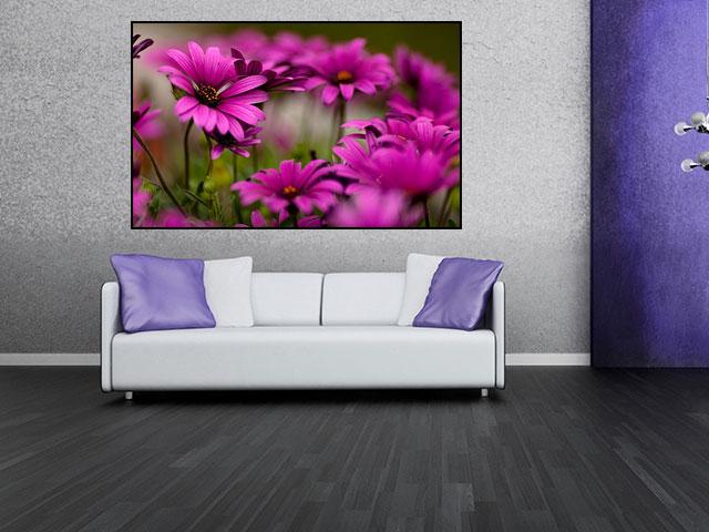 Tablou flori de campie mov - cod L05