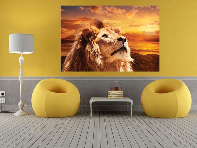 Tablou majestic lion - cod W06