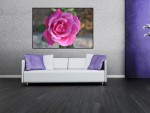 Tablou trandafir roz - cod A50