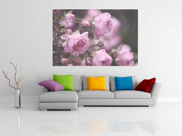 Tablou trandafiri violeti - cod L24